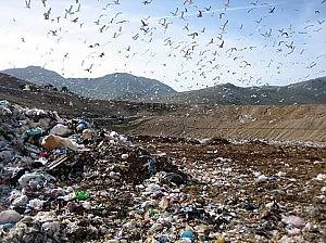Calabria, frode fiscale sui rifiuti Indagato assessore all'ambiente